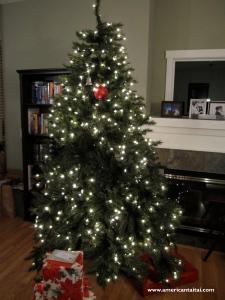 Christmas 2009 att