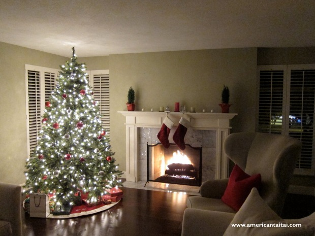 Christmas 2011 att