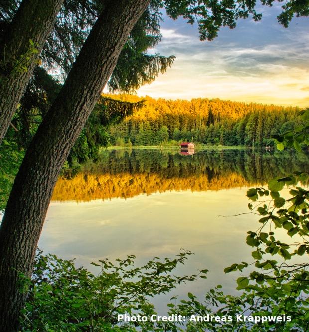 Cottage on Lake att